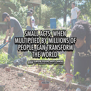 Quote about how small acts can transform the world