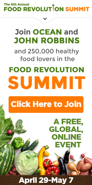 2017 Food Revolution Summit banner