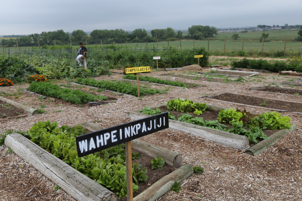 Keya Wakpala Garden on the Rosebud Indian Reservation
