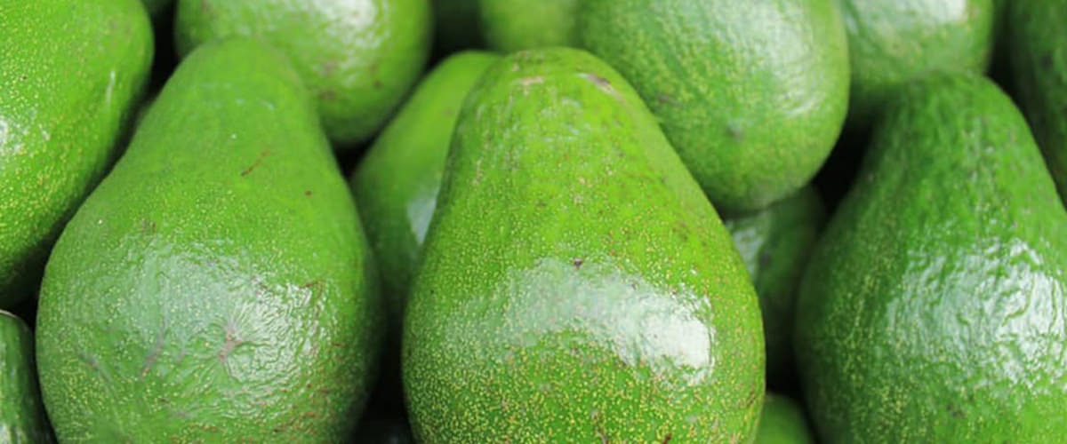 Avocado - stress fighting food