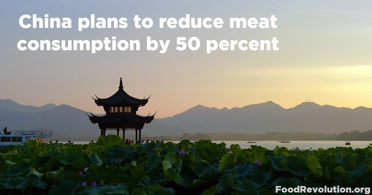China plans to reduce meat consumption