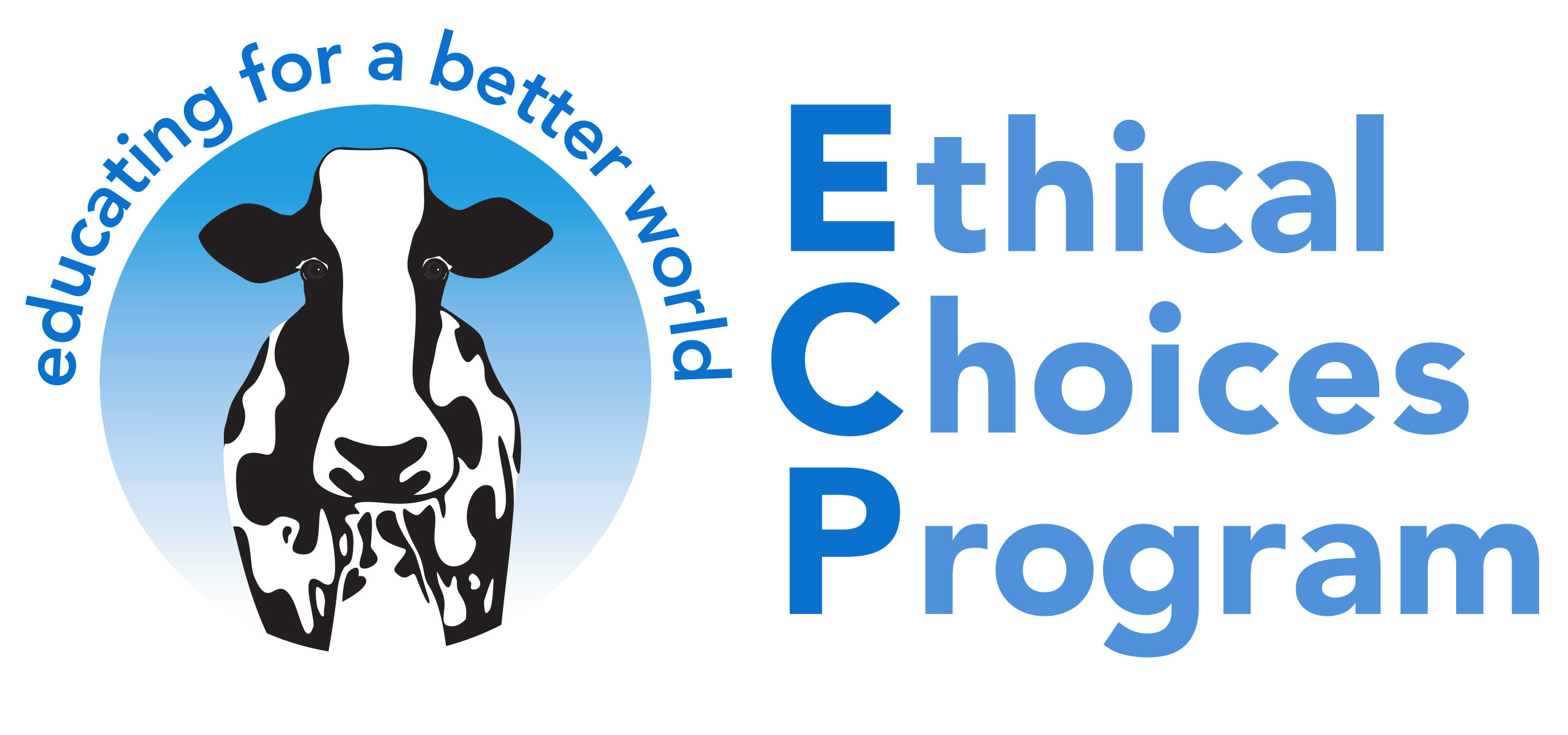 Ethical Choices Program
