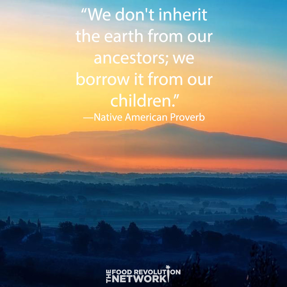 "Quote: ""We don't inherit the earth from our ancestors, we borrow it from our children."""