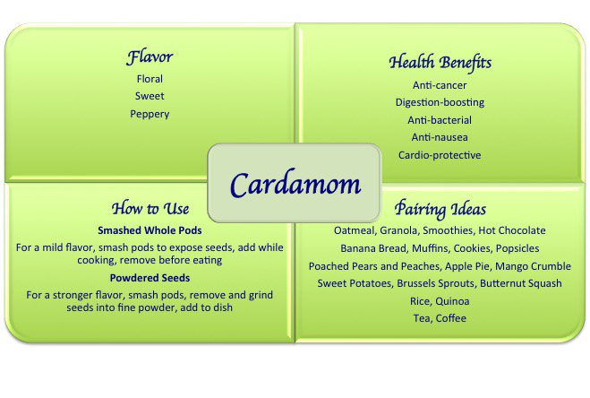 cardamom spice health benefits uses