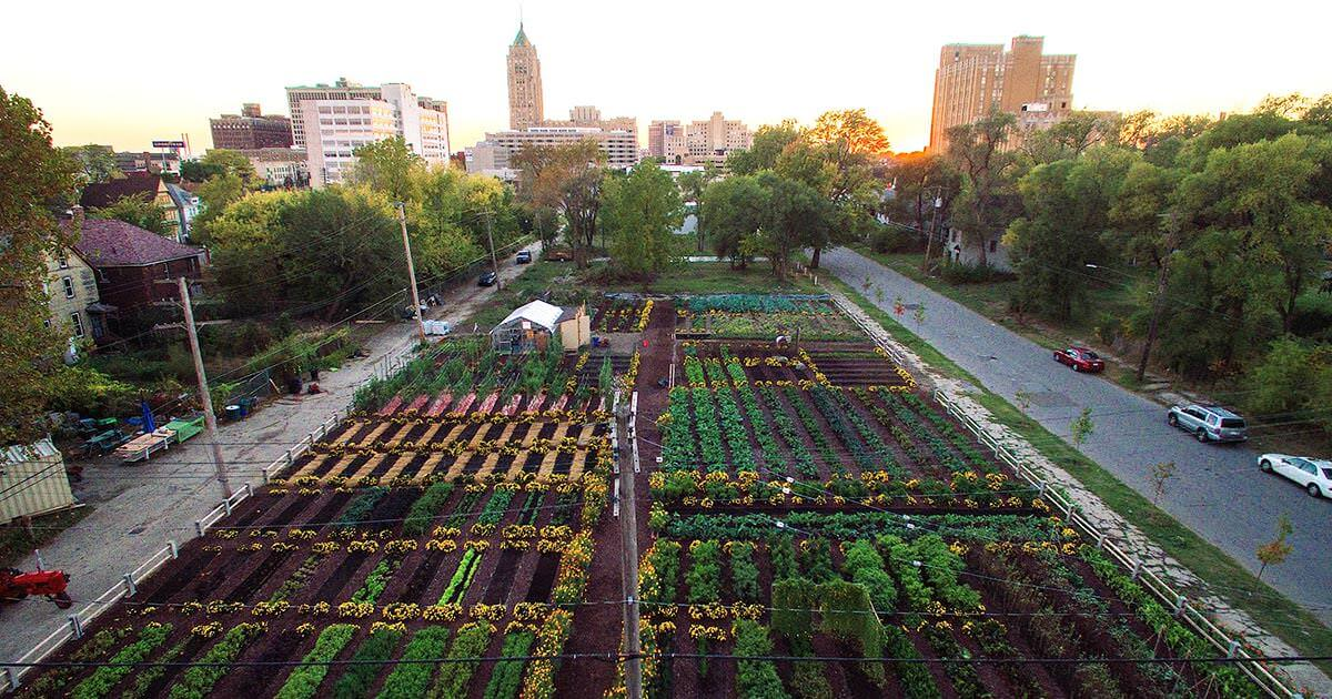 First sustainable urban agrihood in Detroit