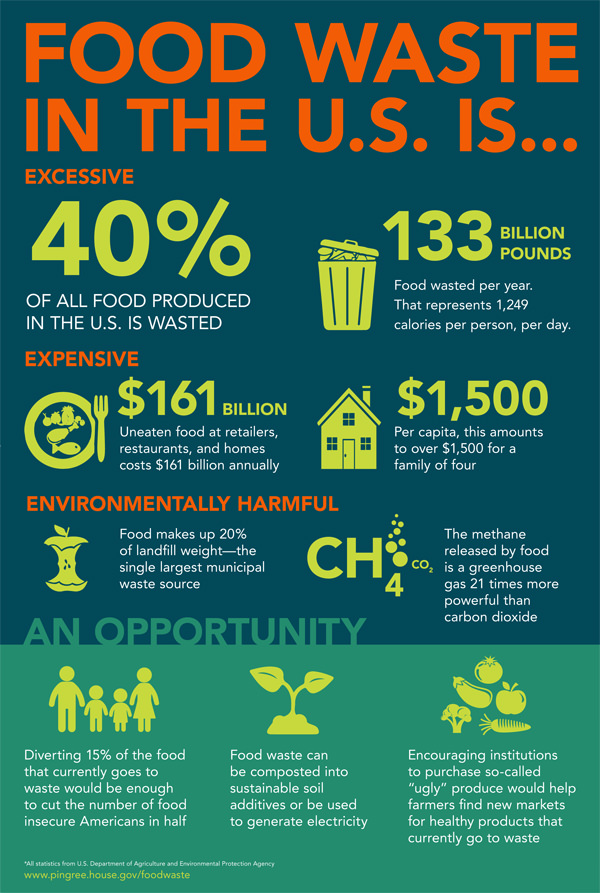 Food waste in the U.S. infographic