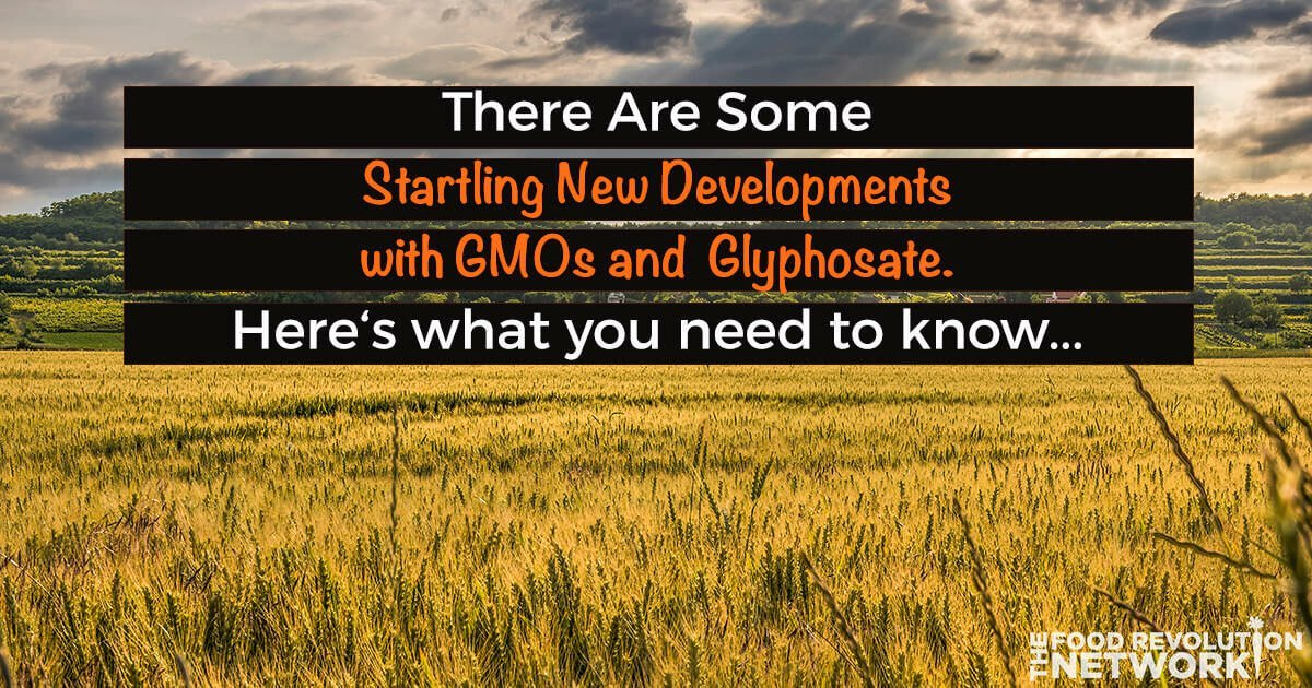 [Video] What You Need to Know About GMOs and Glyphosate