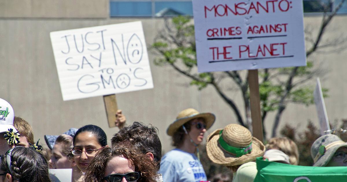 GMOs - take action