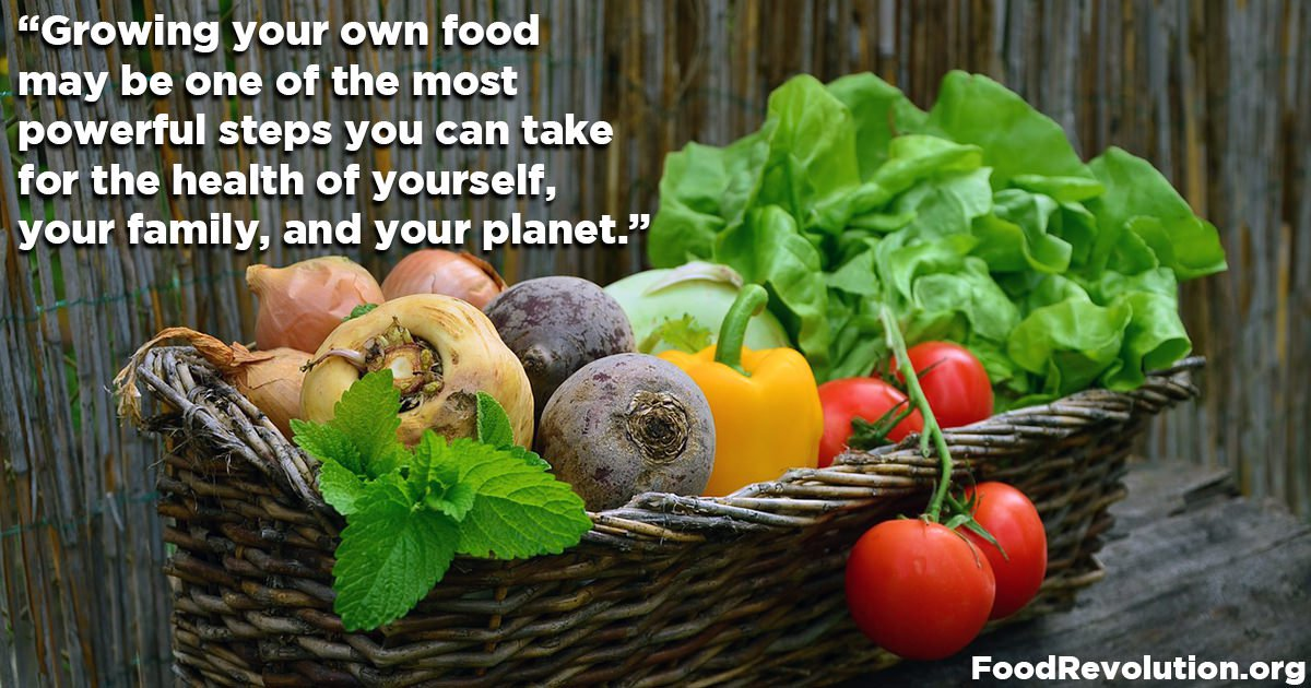 Growing your own food quote