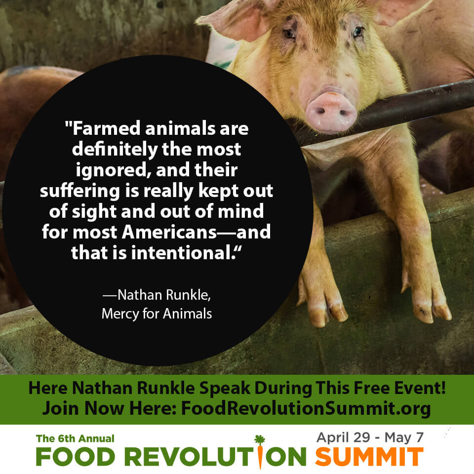 Nathan Runkle quote for the Food Revolution Summit