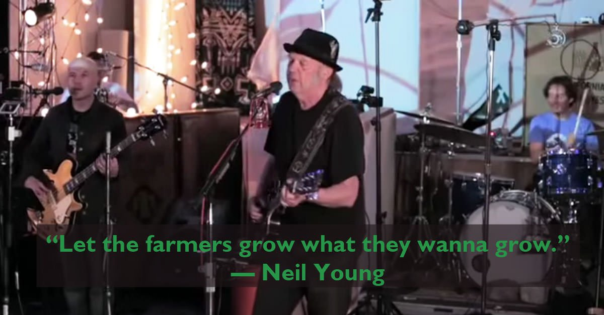 Neil Young takes on Monsanto