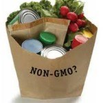 No-GMO-Shopping-Guide-150x150