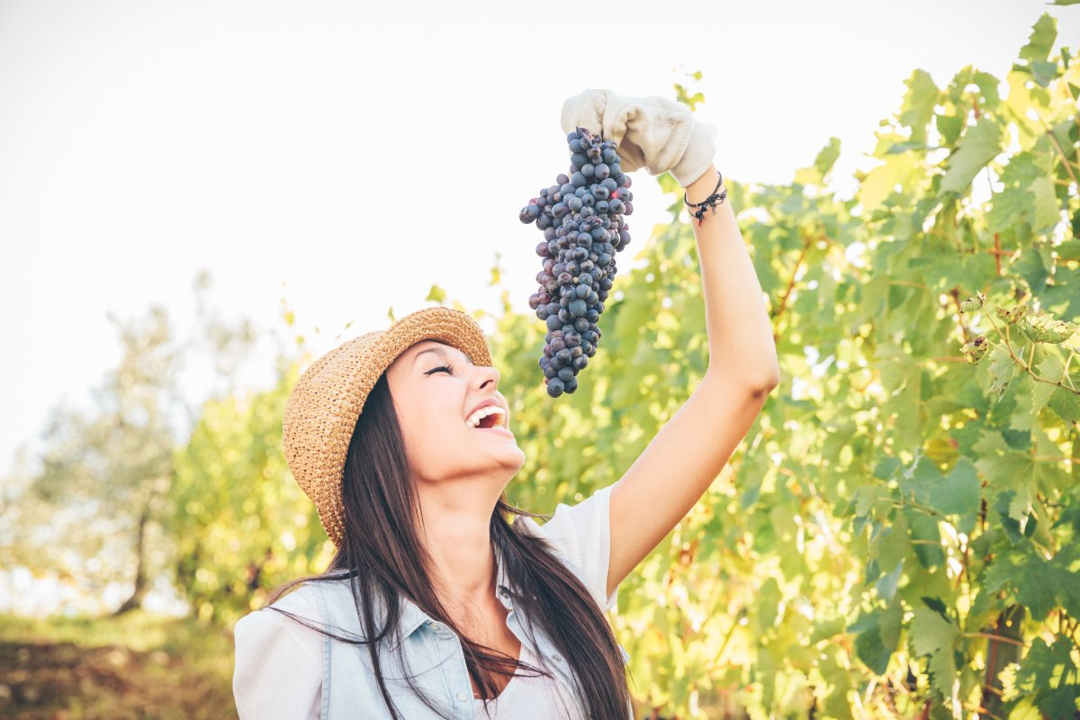 natural sun protection from eating grapes