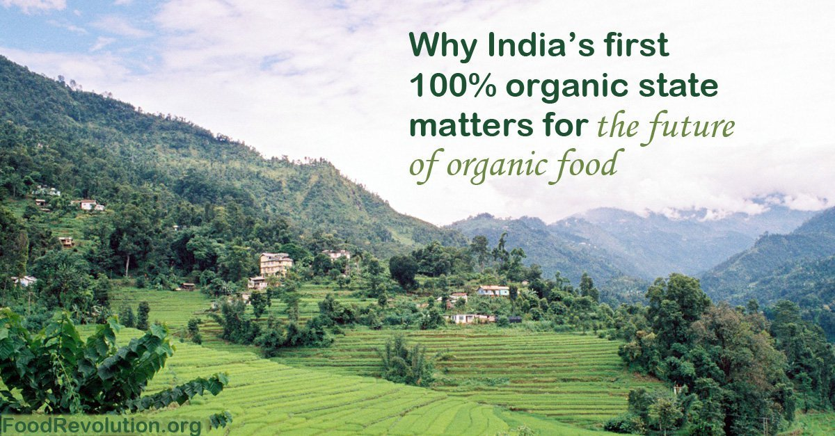 Organic Food Sakkim in India