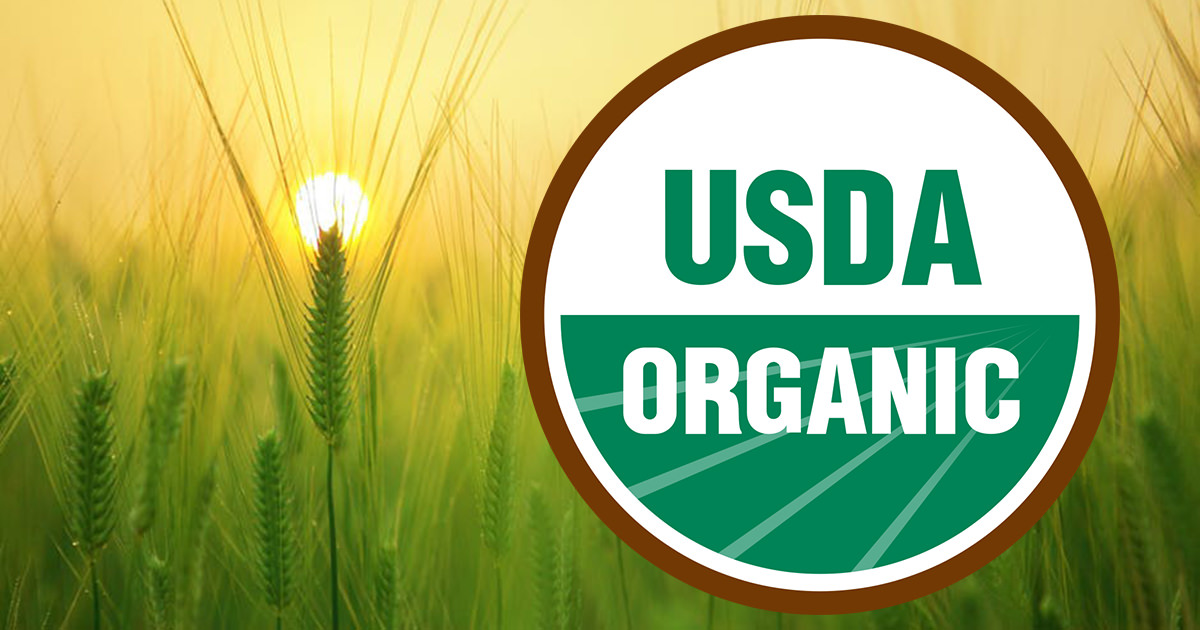 What You Need to Know About Organic Fraud in the U.S. — And Why It's So Important to Take Action to Protect Organic Standards