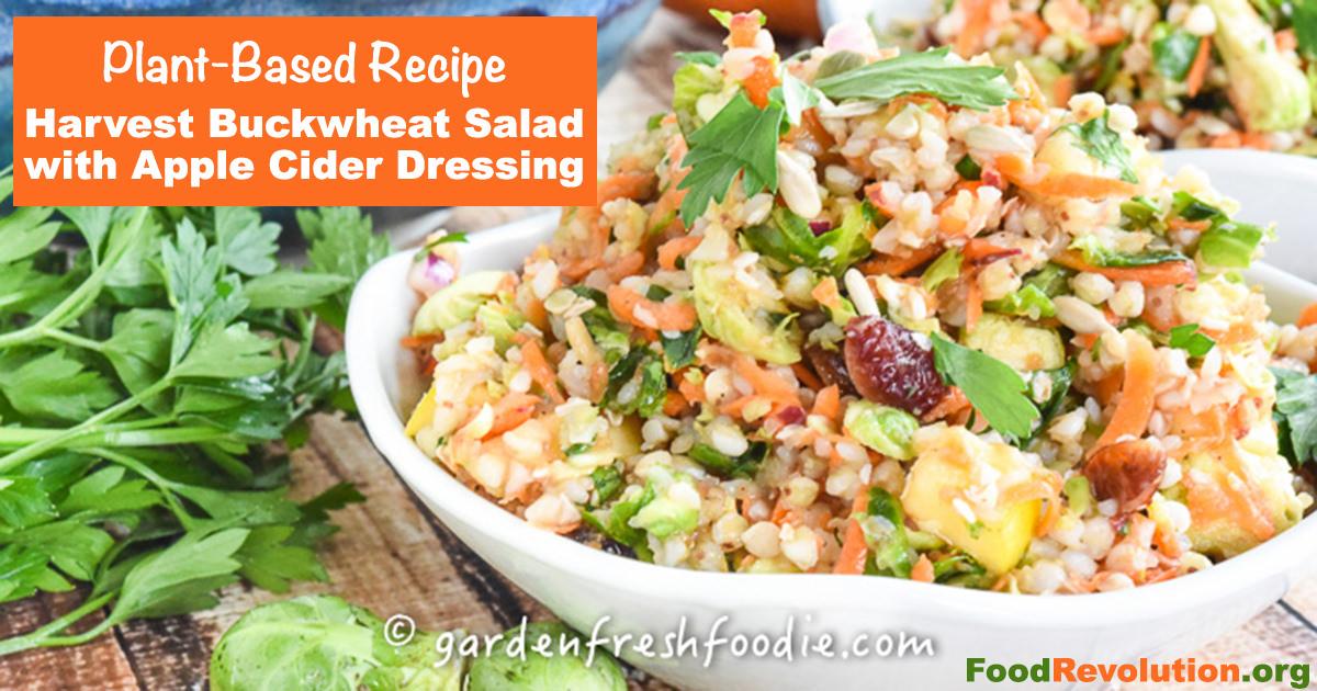 Plant-based holiday recipe for Harvest Buckwheat Salad