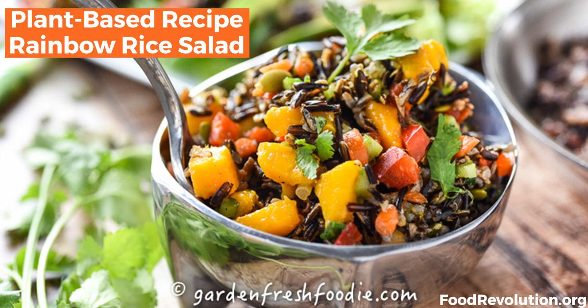 Plant-Based Recipe Rainbow Rice Salad