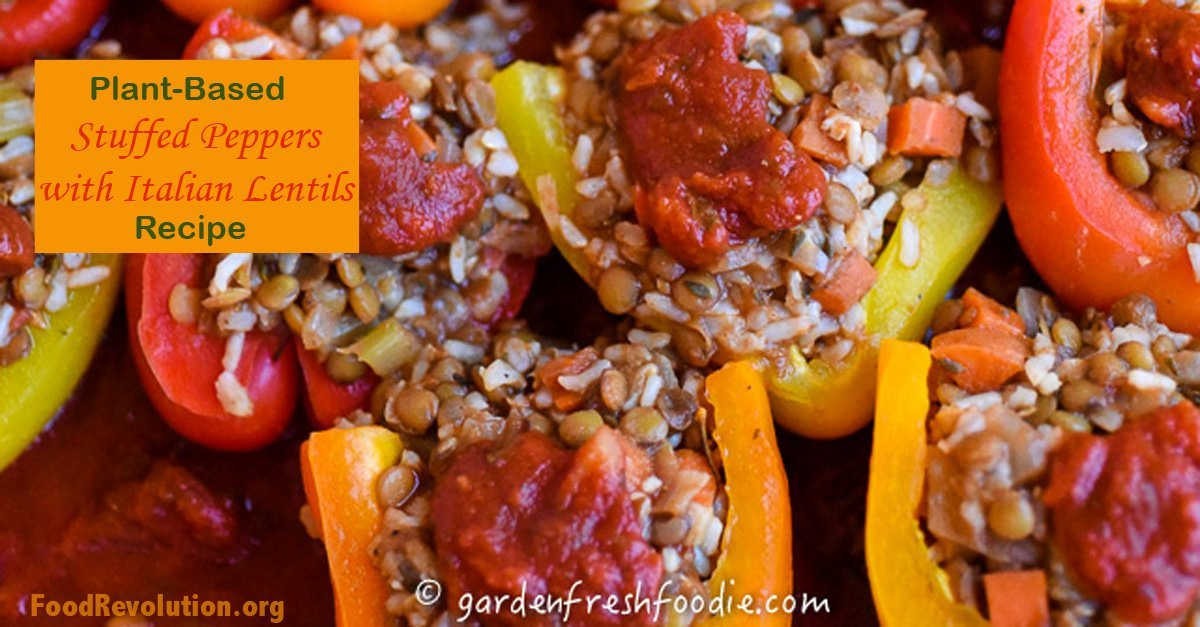 Vegetable stuffed bell peppers with lentils and rice