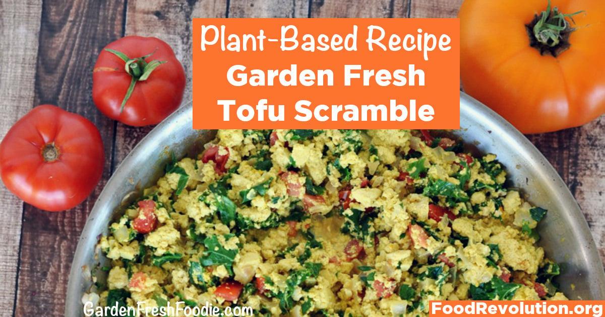 Plant-Based Recipe for Tofu Scramble