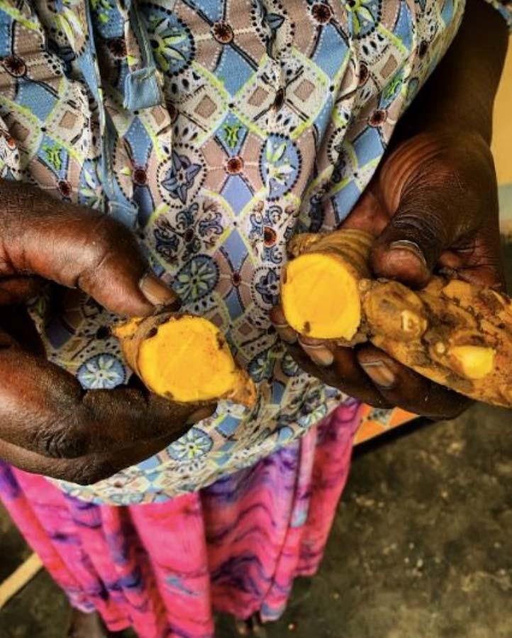 Vicky Lokwiya holding turmeric variety