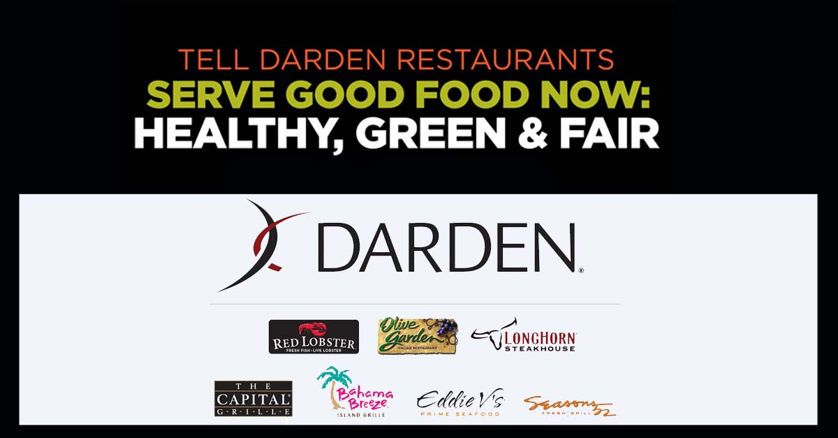 Redefining Good Food At The Nation S Largest Casual Restaurant Company