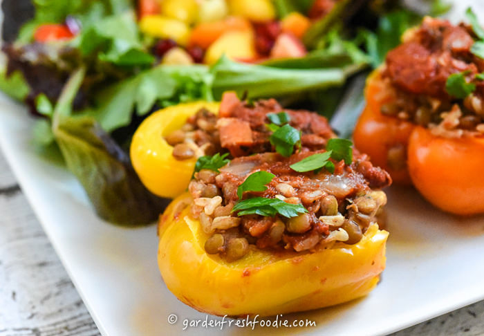 Beautiful Stuffed Peppers with Lentils
