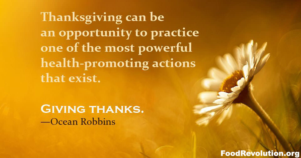 Thanksgiving gratitude quote by Ocean Robbins