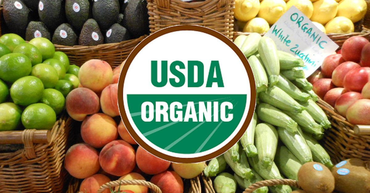 organic food is it really better essay If you're trying to get both your weight and your health on track, you've probably heard the arguments both for and against seeking out organic foods.