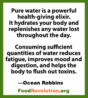 Quote about water health benefits by Ocean Robbins