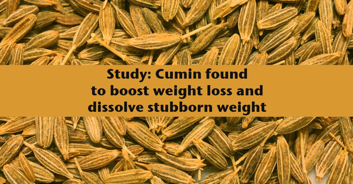 Weight Loss Cumin