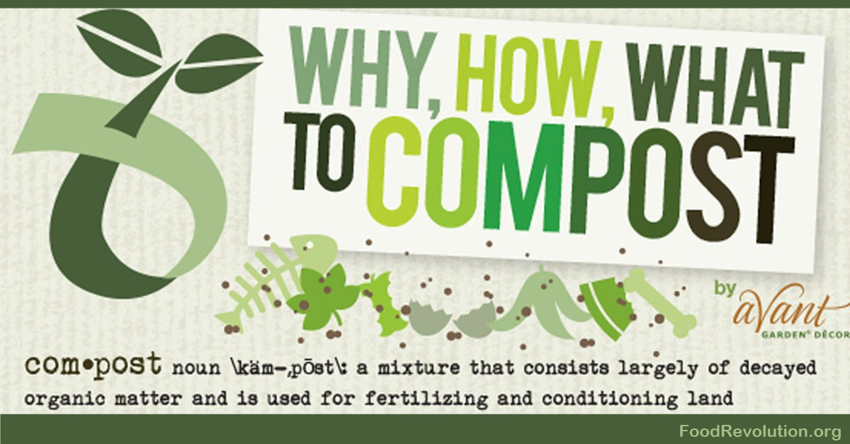 How To Compost Infographic on Plant Life Cycle Print
