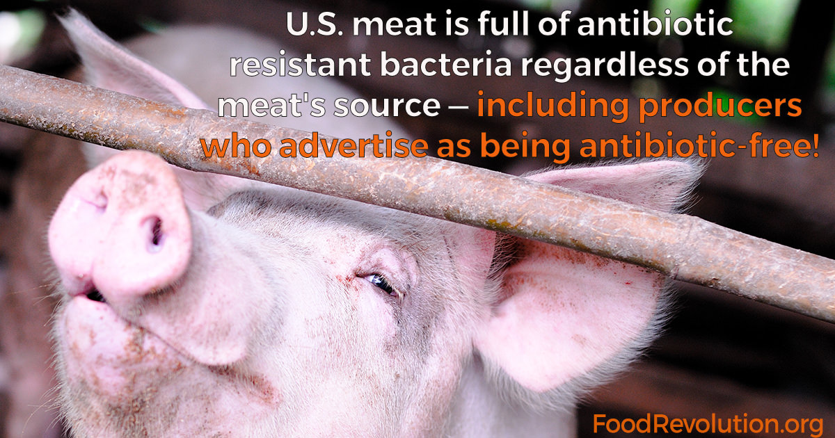 antibiotics in meat production