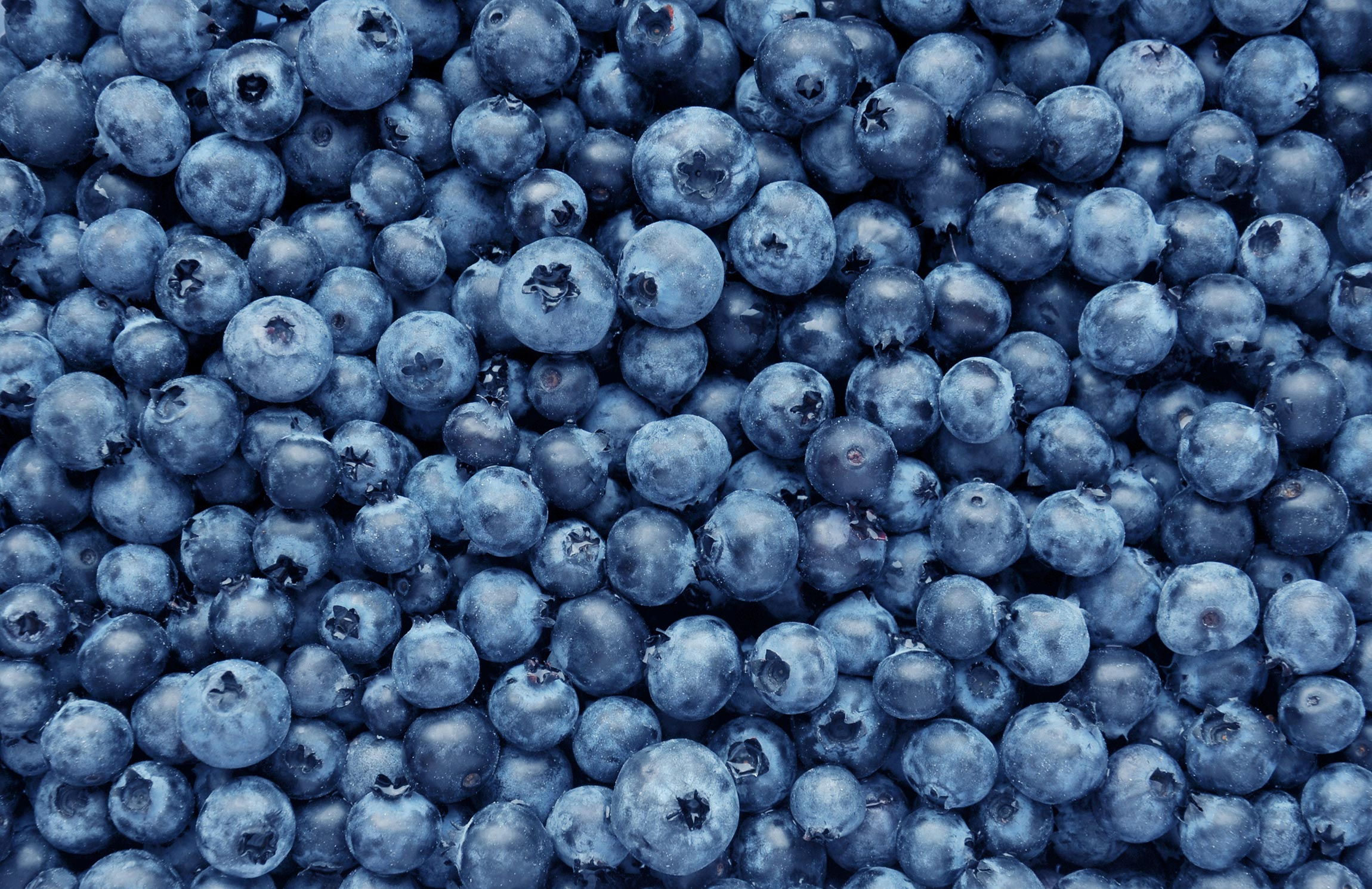 Foods for healthy skin - blueberries
