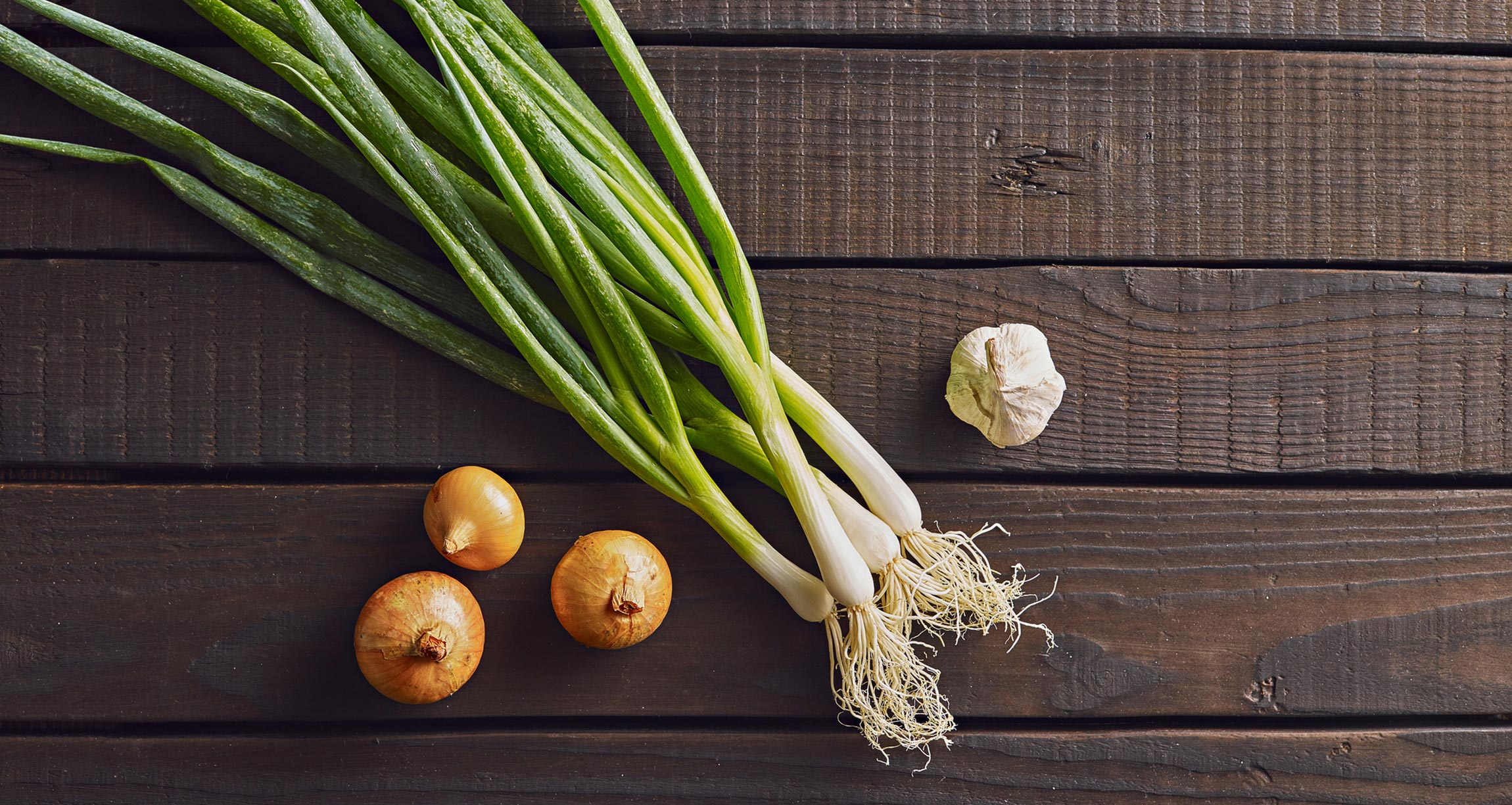 garlic bulb, green onion, and onion bulbs on a table