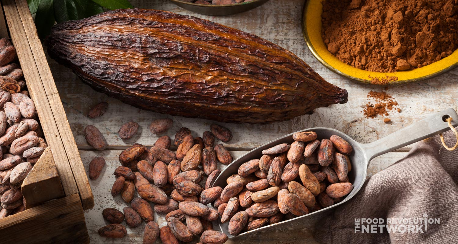 Anti-inflammatory diet: cacao seeds