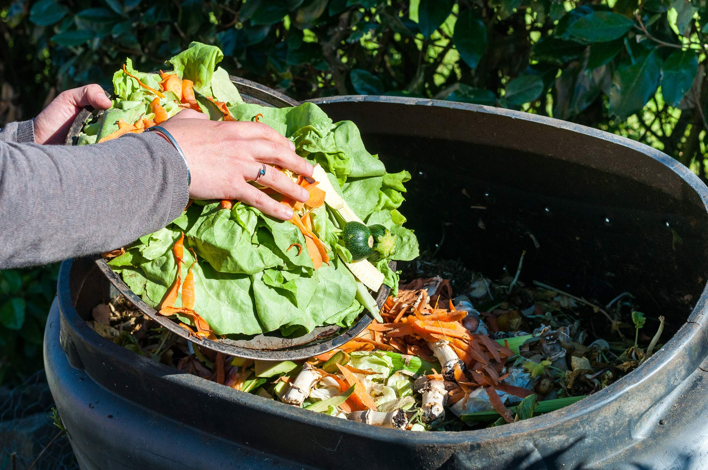 Throwing away produce scraps for compost