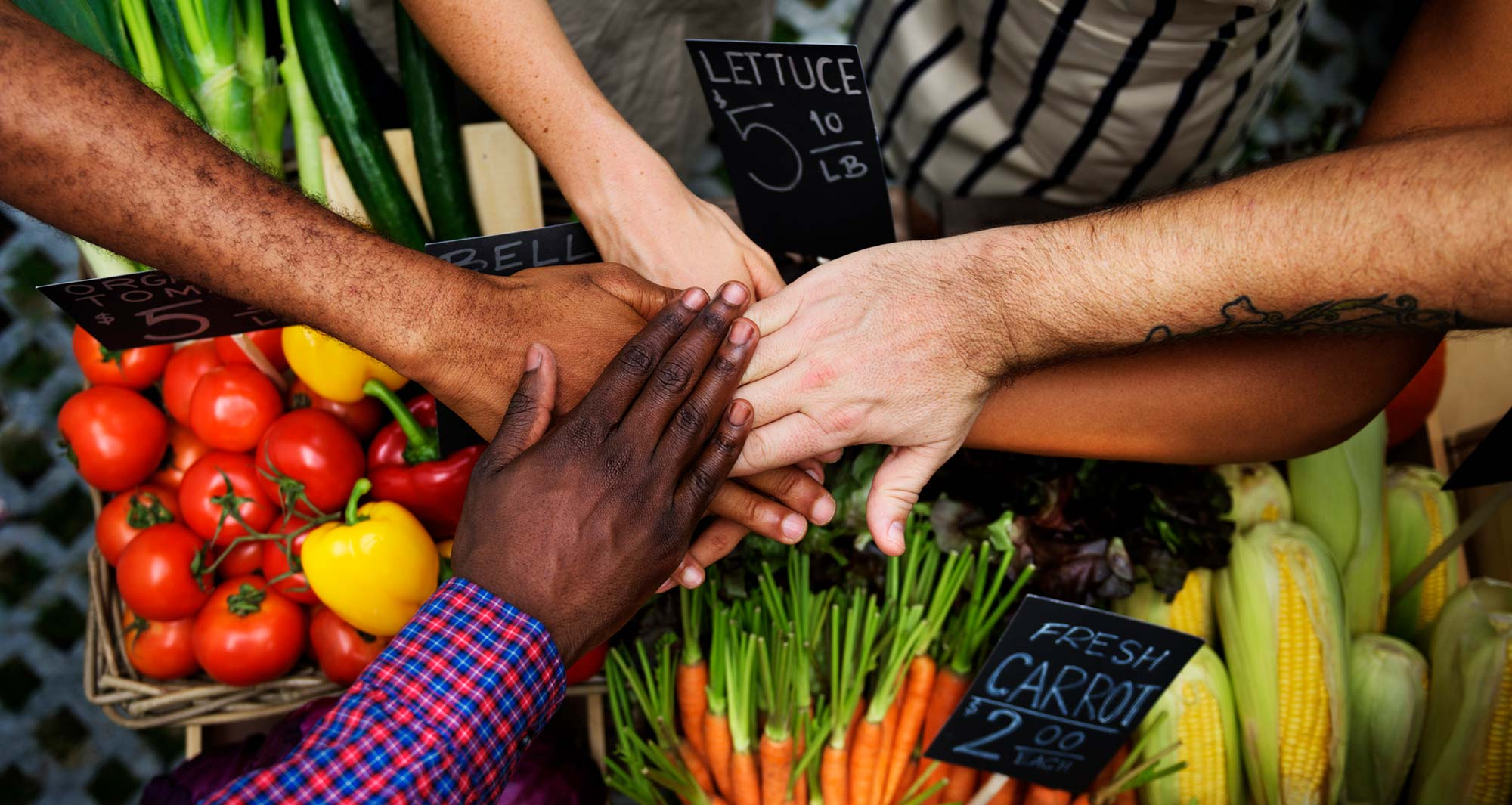 The Food Revolution Summit is for everyone.