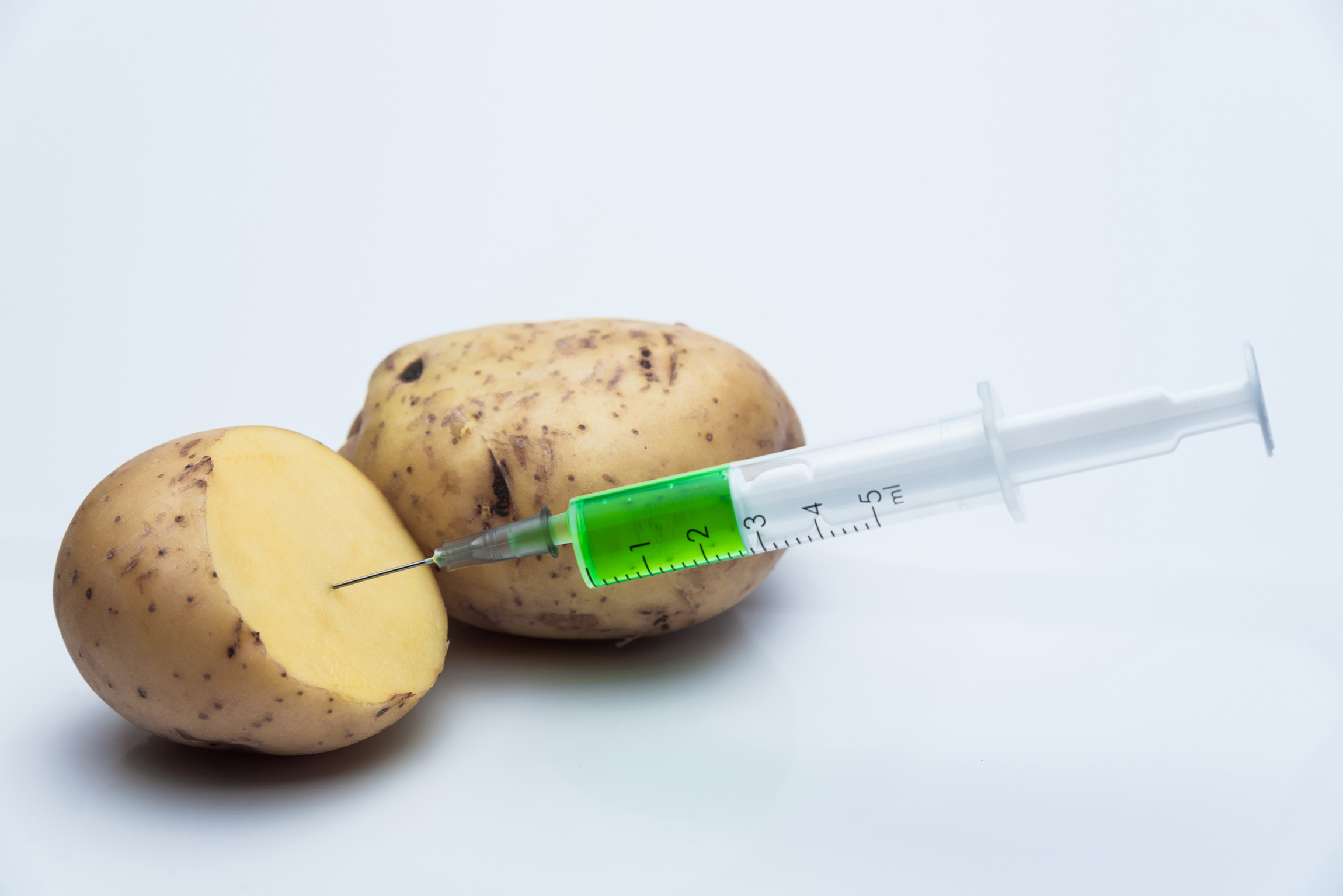 GMO potatoes: are they safe?