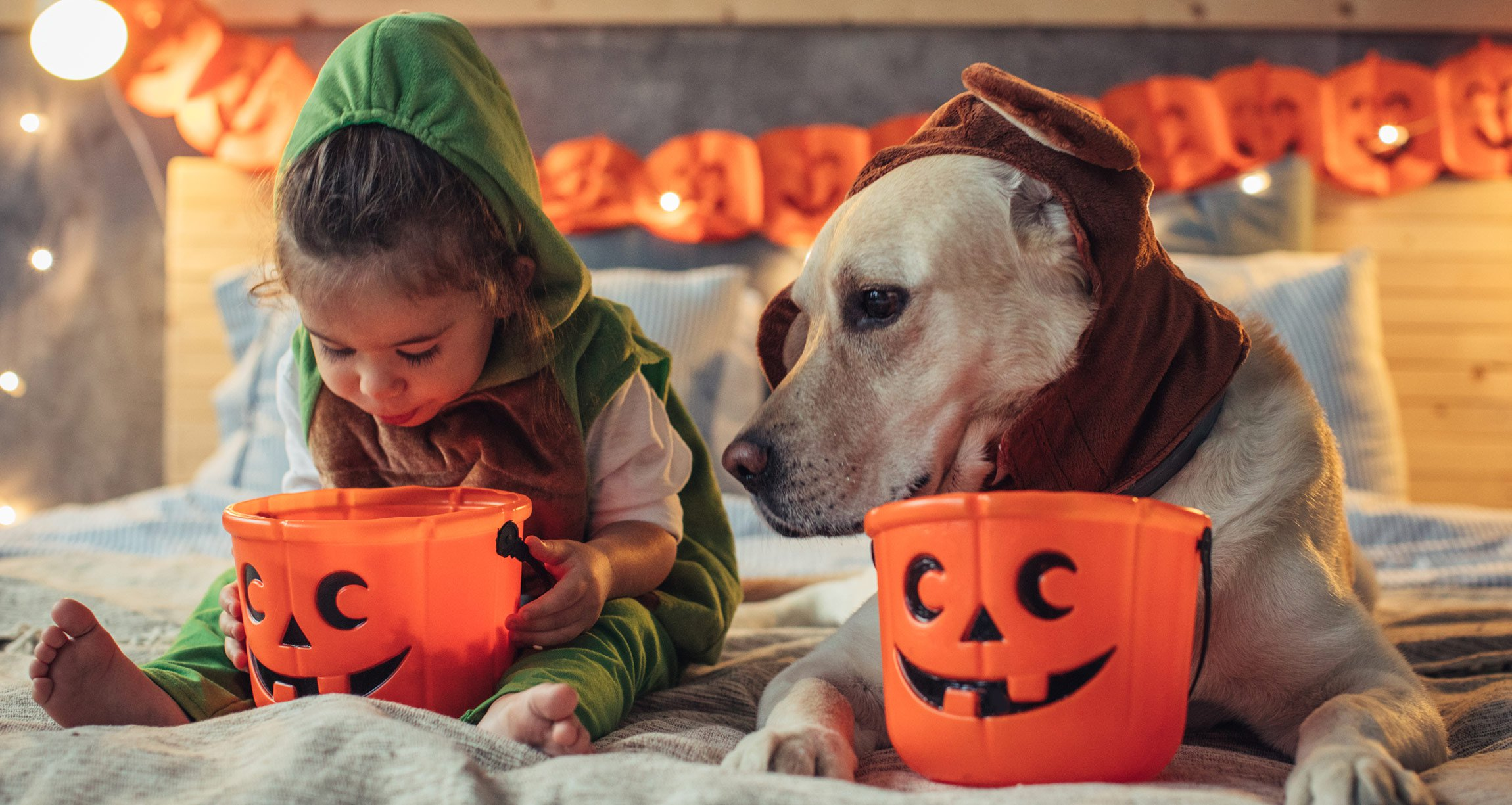 Girl and dog in costumes with jack-o-lantern buckets