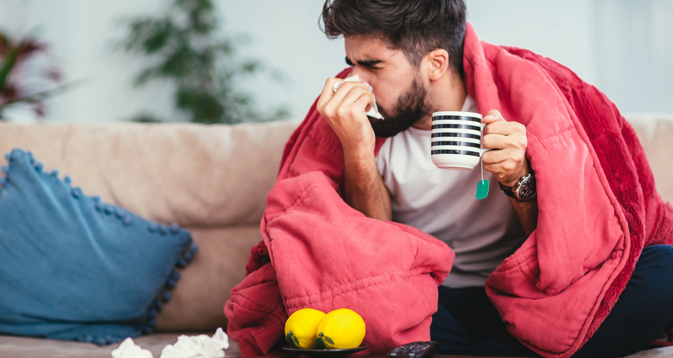 Man sick with a blanket, tea, lemons, and blowing his nose