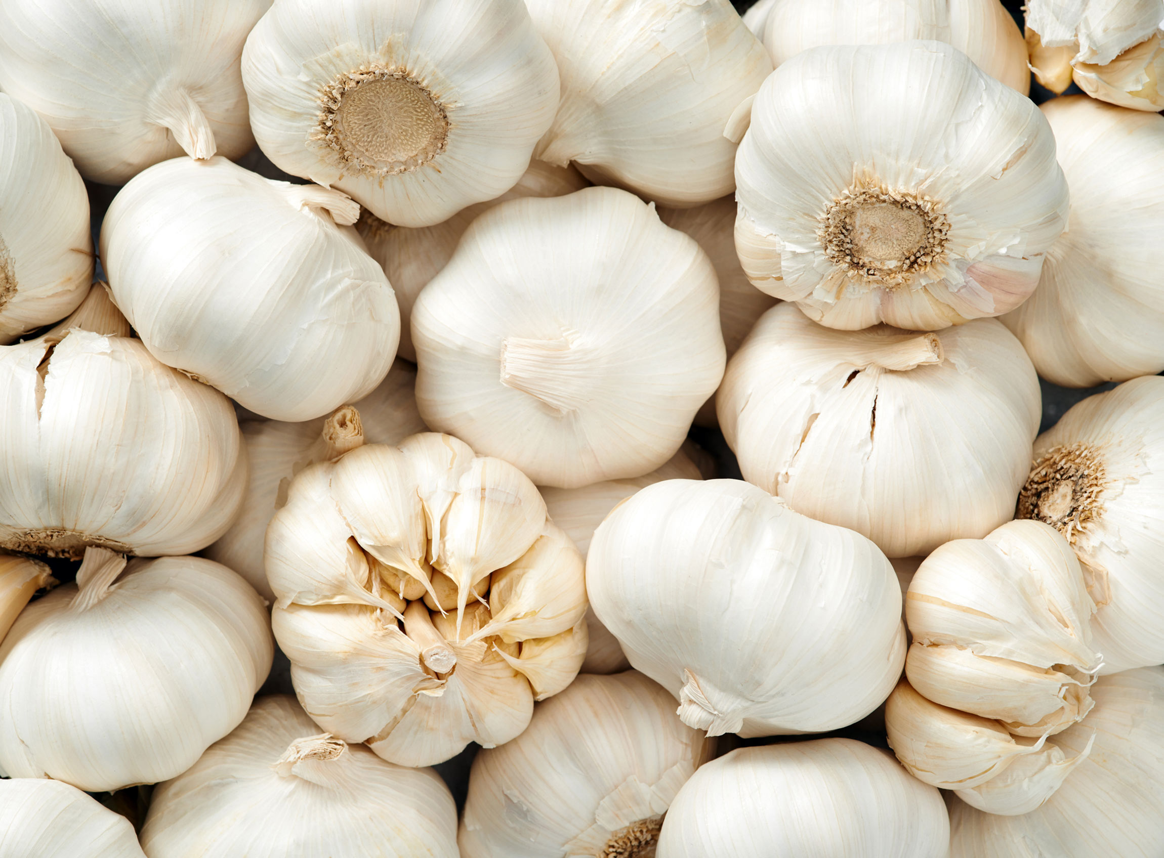 Diet for immunity: garlic