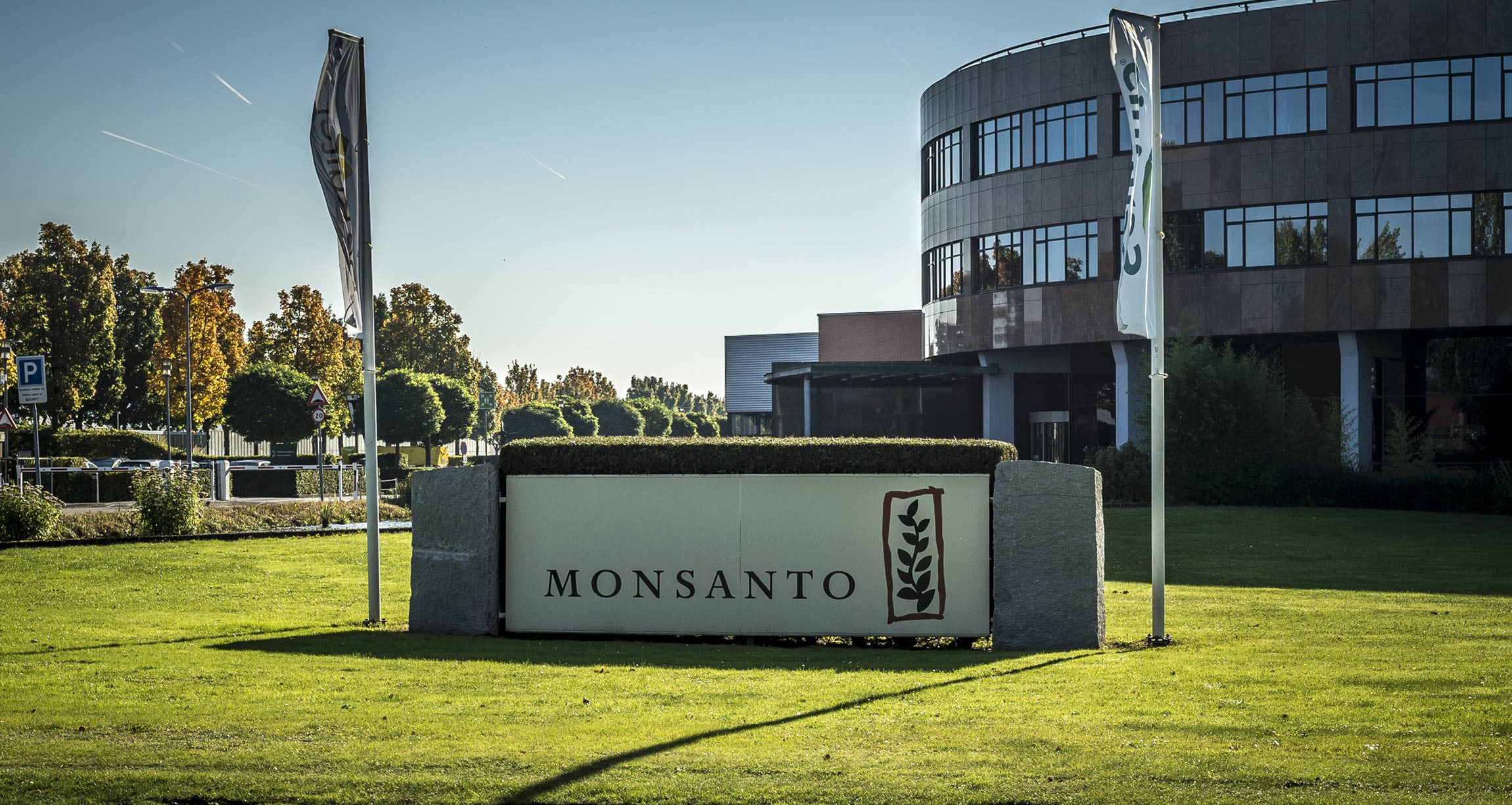 What The $289 Million Verdict Against Monsanto Means To You