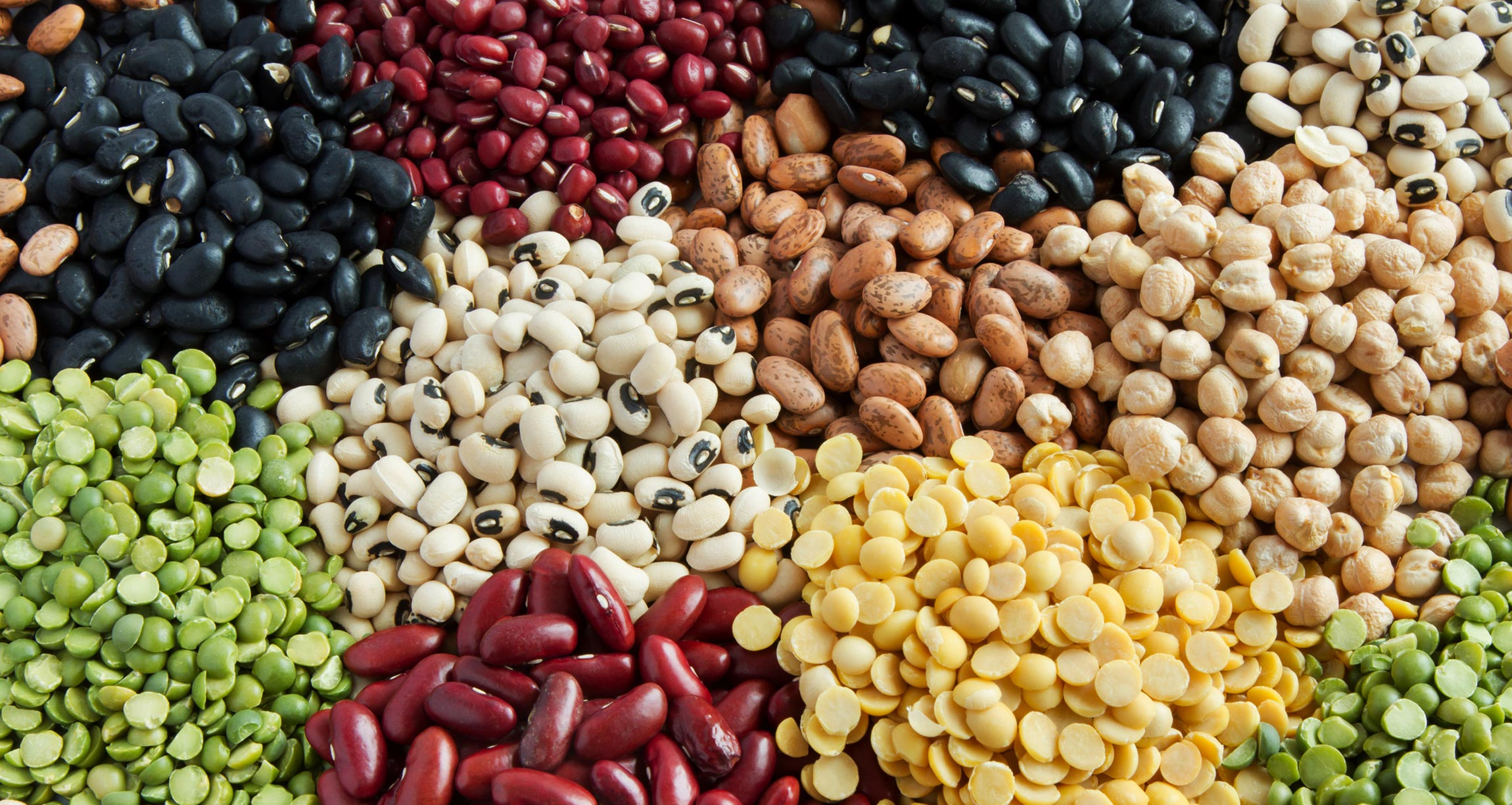 display of a variety of beans