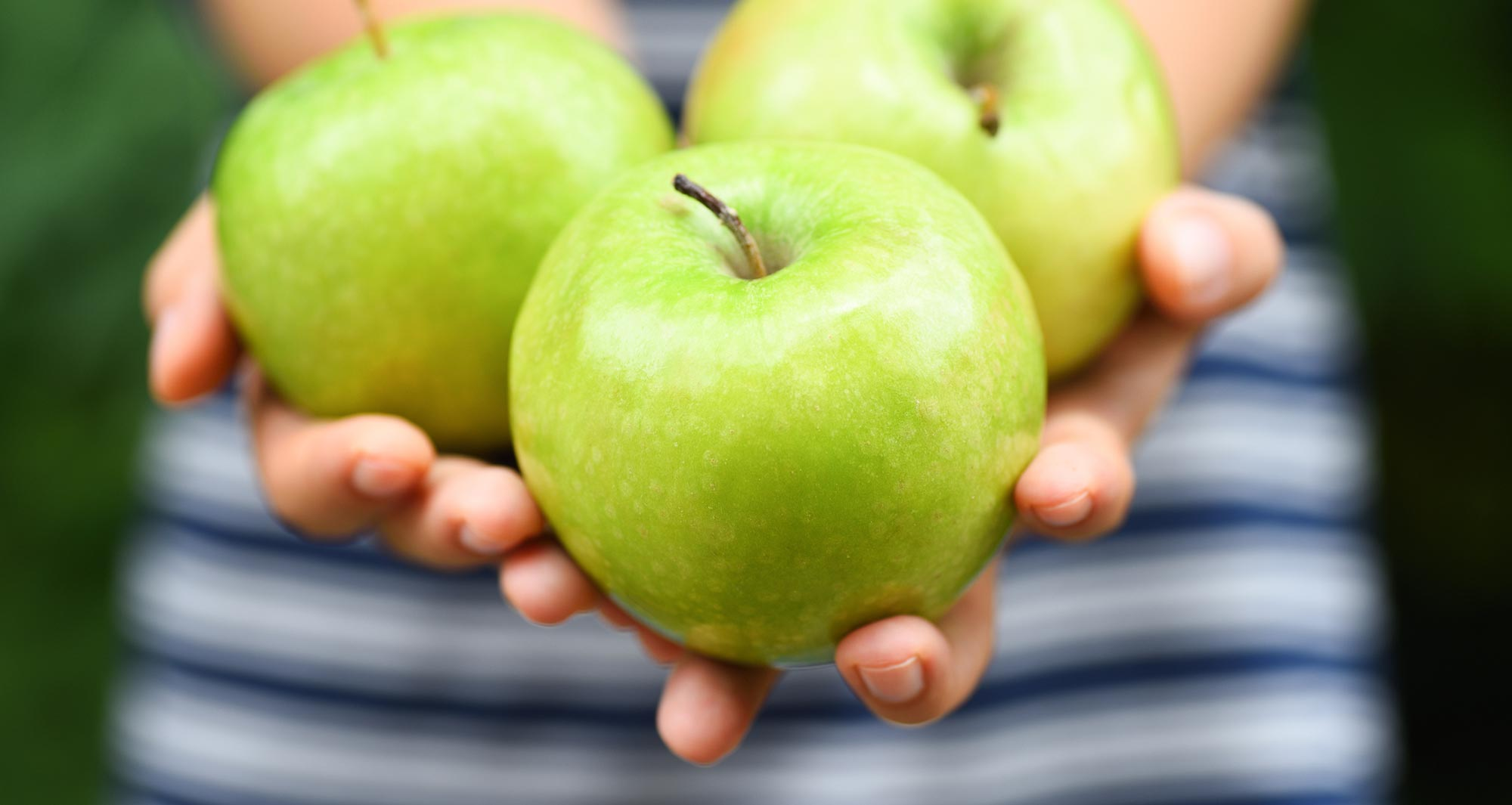 handful of green apples