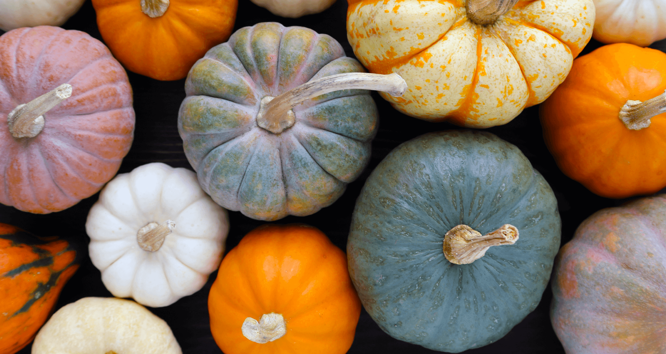 9 Proven Health Benefits of Pumpkins + 9 Truly Healthy Pumpkin Recipes (That Taste Delicious!)