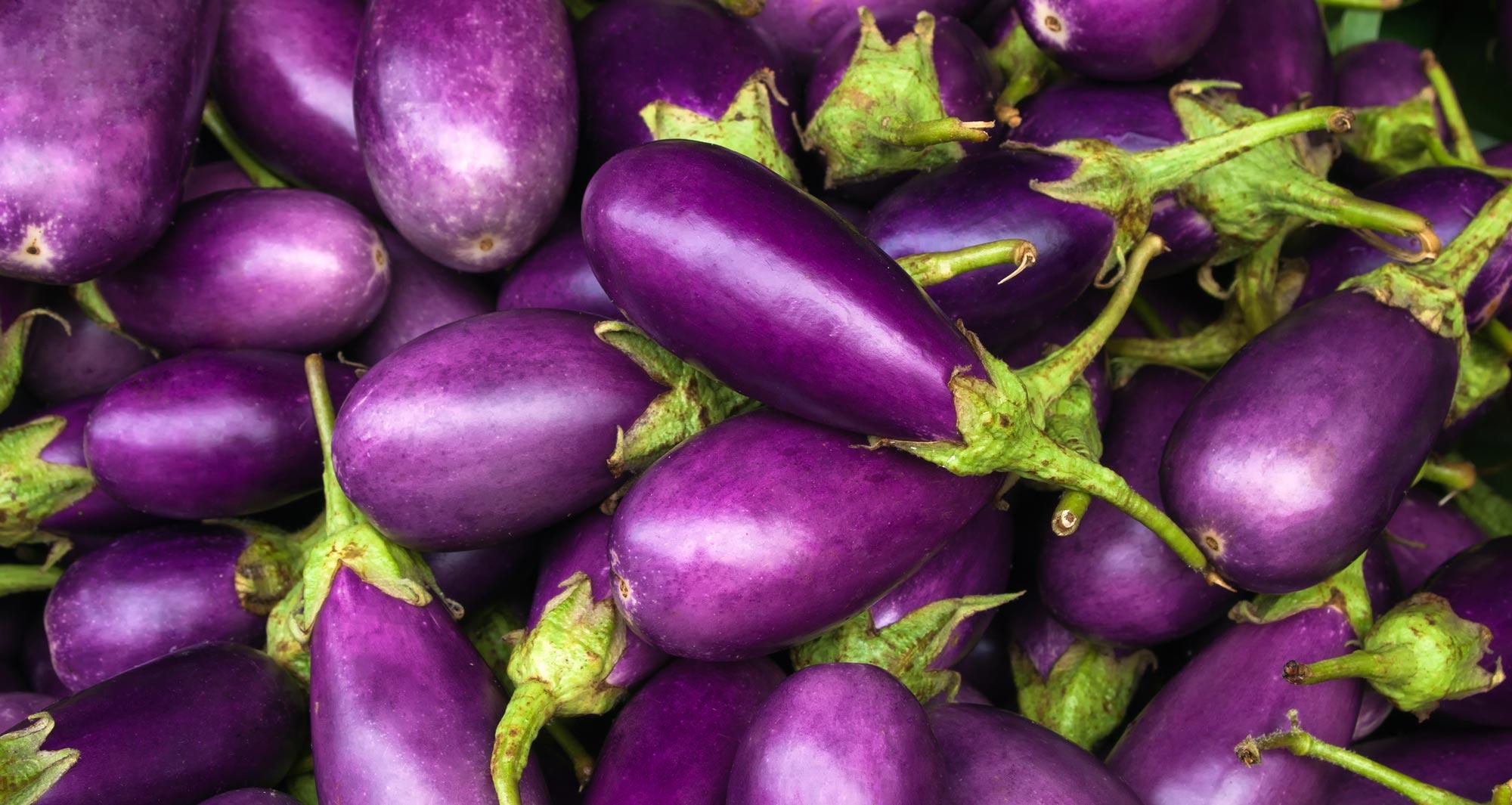 pile of eggplants