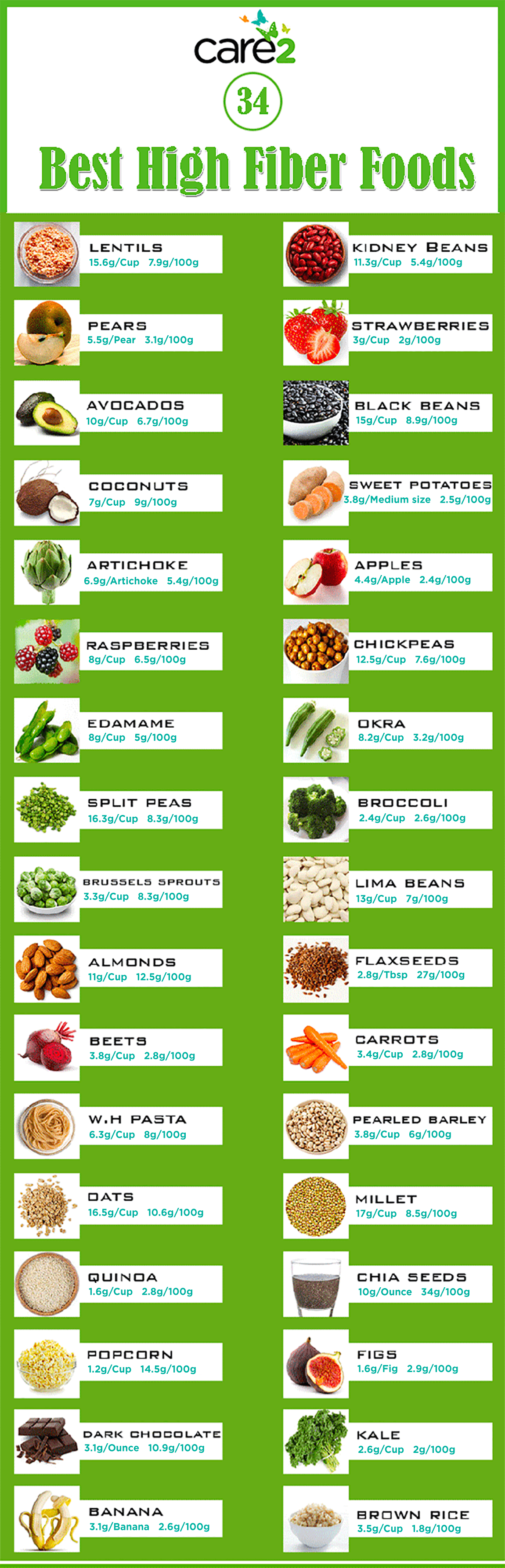 High fiber foods infographic