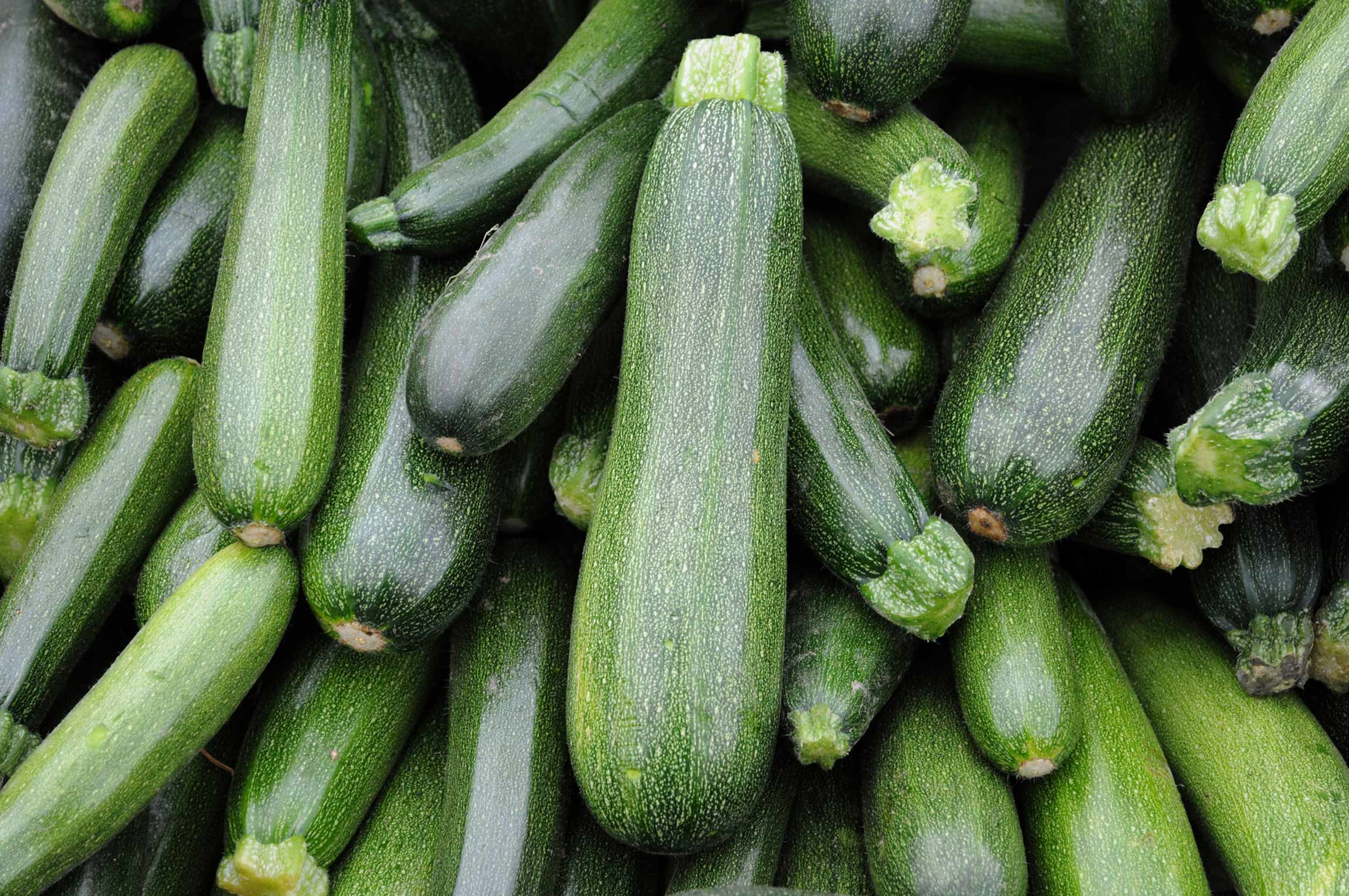 Mood-Boosting Foods: Zucchini