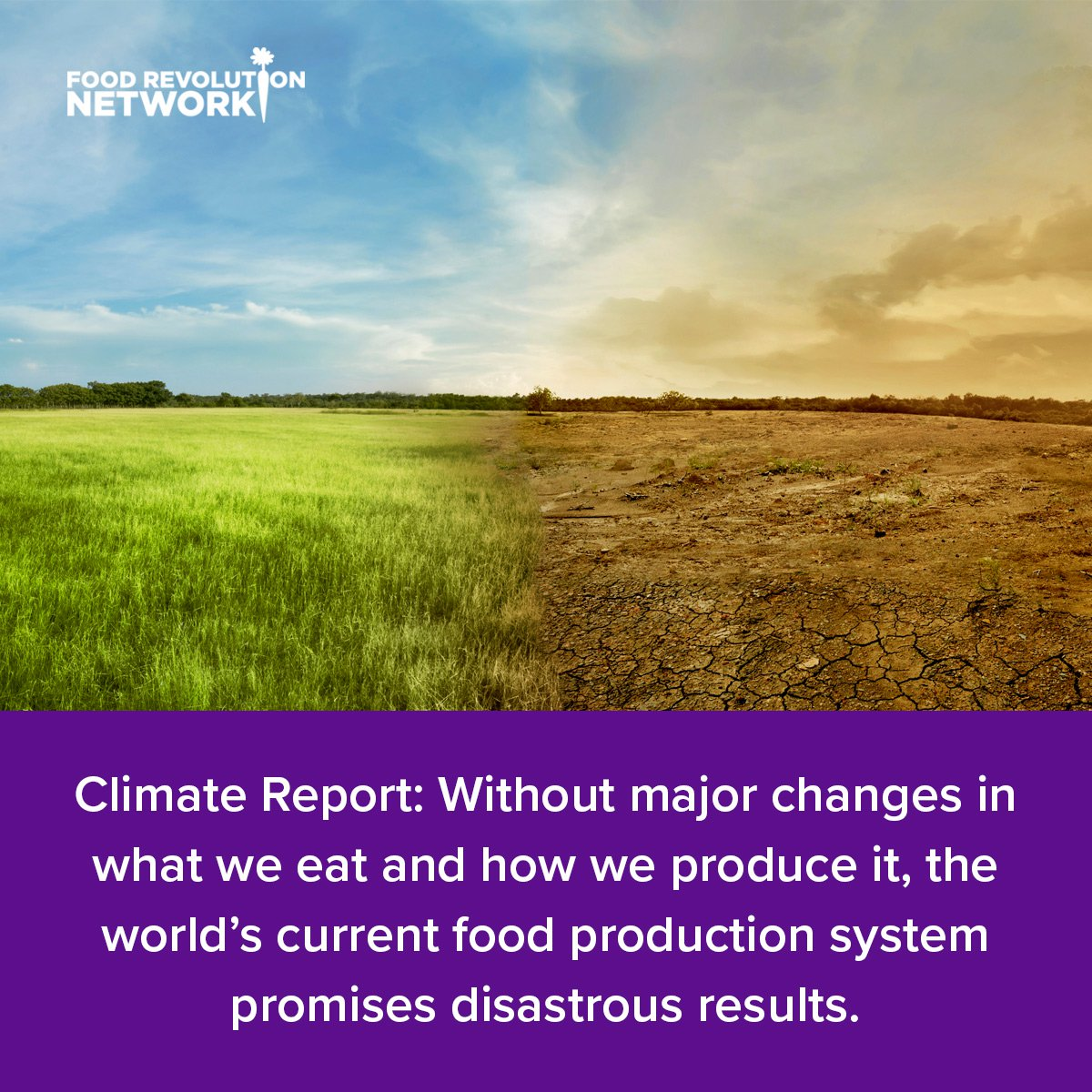Climate Report: Without major changes in what we eat and how we produce it, the world's current food production system promises disastrous results.