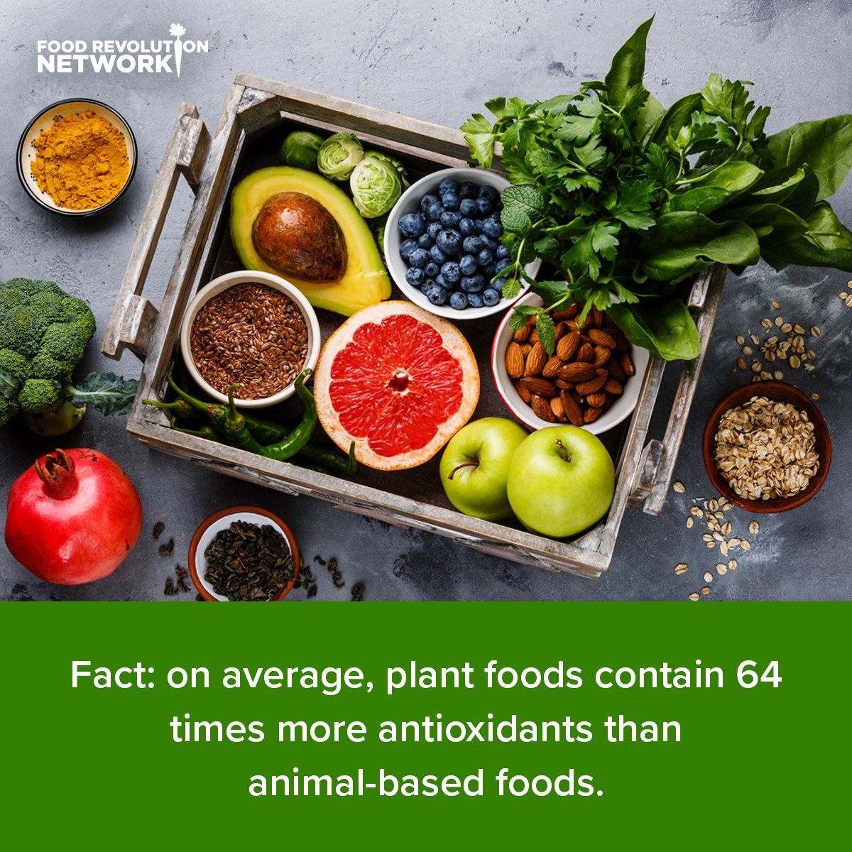 Fact: on average, plant foods contain 64 times more antioxidants than animal-based foods.